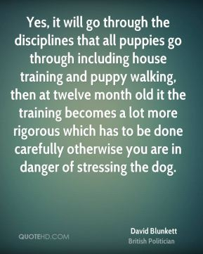 David Blunkett - Yes, it will go through the disciplines that all puppies go through including house training and puppy walking, then at twelve month old it the training becomes a lot more rigorous which has to be done carefully otherwise you are in danger of stressing the dog.