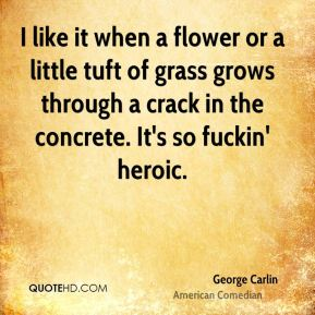 George Carlin - I like it when a flower or a little tuft of grass grows through a crack in the concrete. It's so fuckin' heroic.