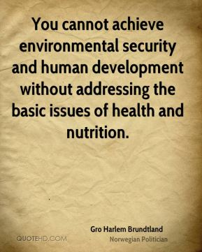 Gro Harlem Brundtland - You cannot achieve environmental security and human development without addressing the basic issues of health and nutrition.