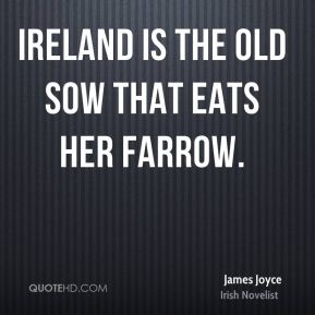 Ireland is the old sow that eats her farrow.