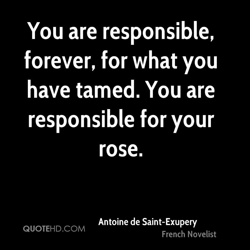 You are responsible, forever, for what you have tamed. You are responsible for your rose.