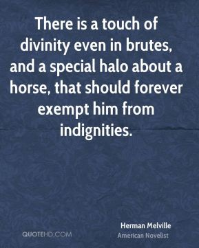 Herman Melville - There is a touch of divinity even in brutes, and a special halo about a horse, that should forever exempt him from indignities.