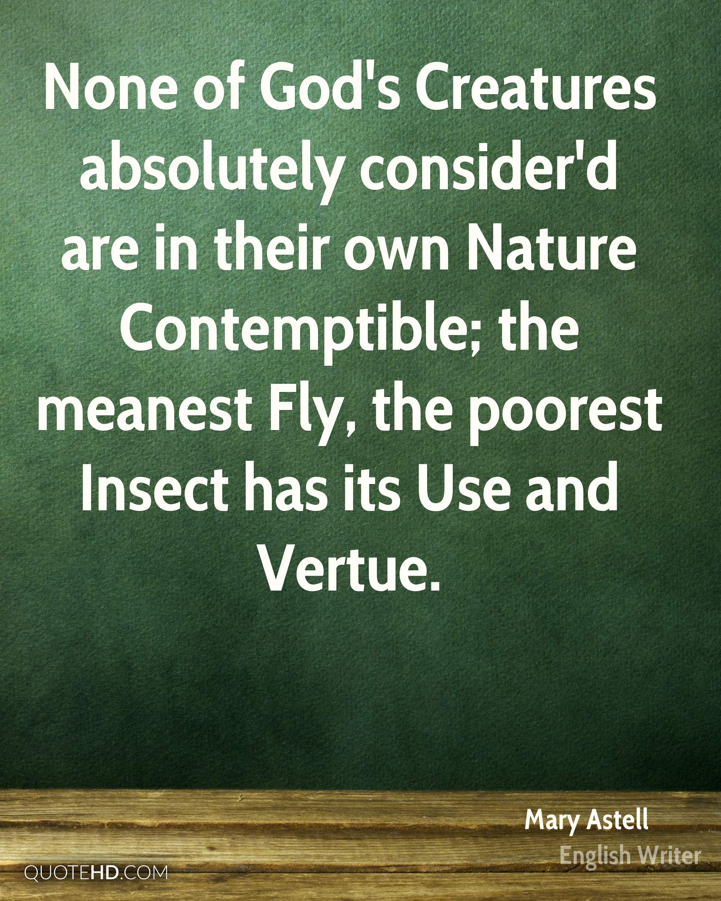 None of God's Creatures absolutely consider'd are in their own Nature Contemptible; the meanest Fly, the poorest Insect has its Use and Vertue.