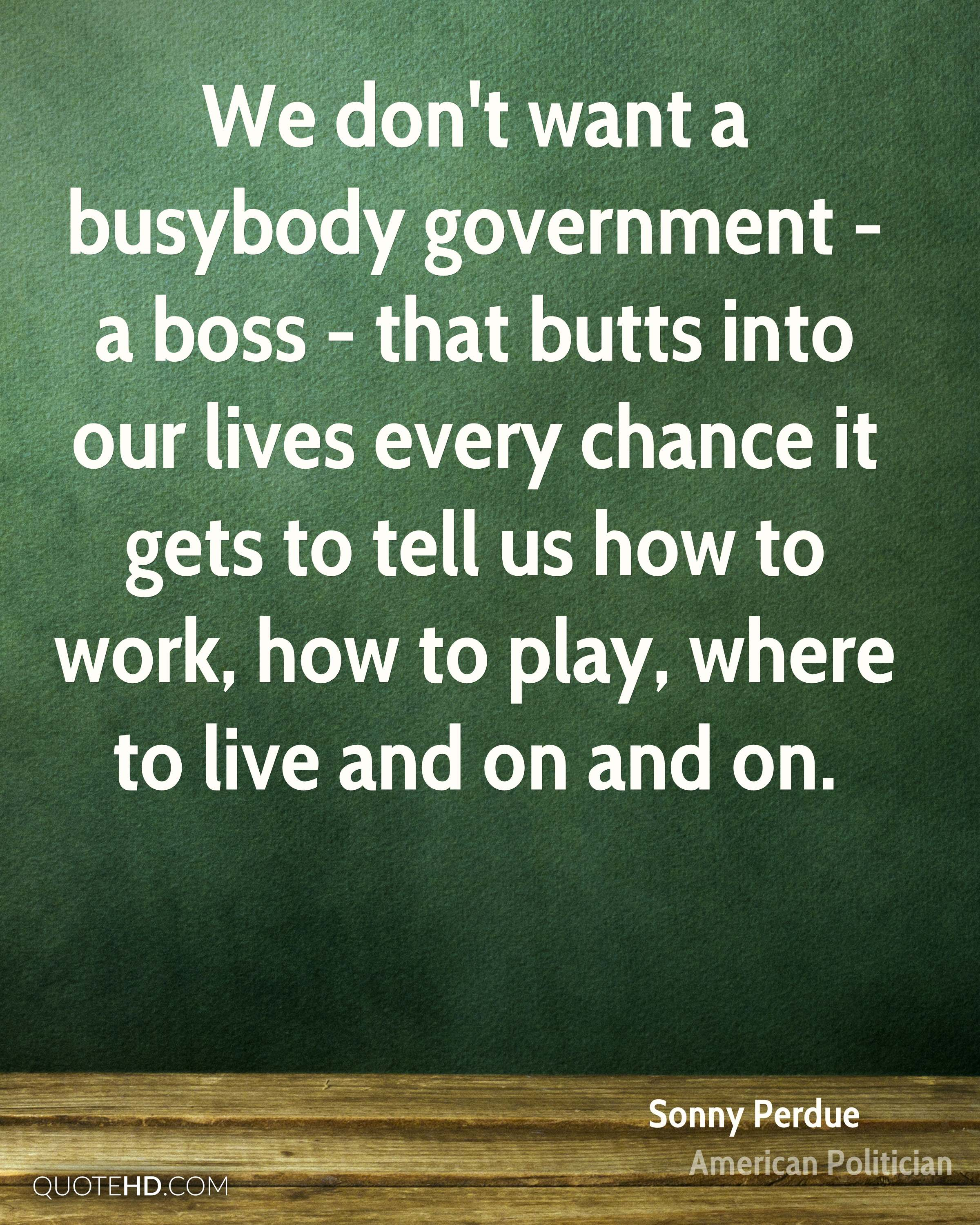 We don't want a busybody government - a boss - that butts into our lives every chance it gets to tell us how to work, how to play, where to live and on and on.