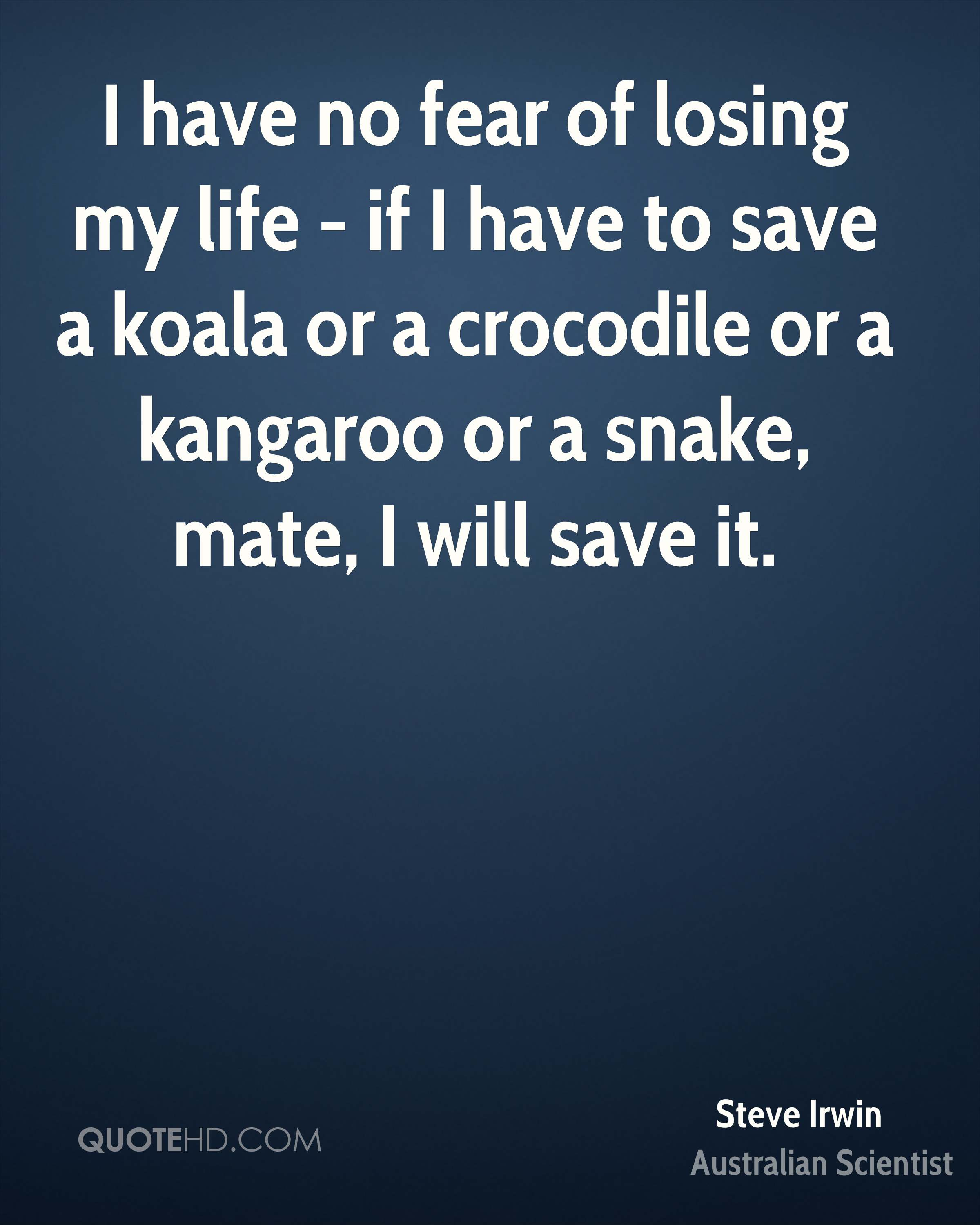 I have no fear of losing my life - if I have to save a koala or a crocodile or a kangaroo or a snake, mate, I will save it.