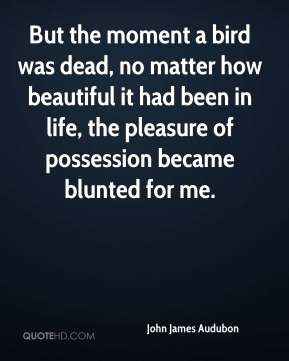 But the moment a bird was dead, no matter how beautiful it had been in life, the pleasure of possession became blunted for me.