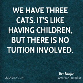 We have three cats. It's like having children, but there is no tuition involved.