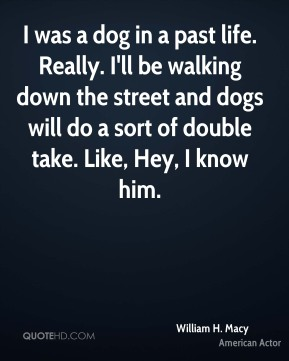 I was a dog in a past life. Really. I'll be walking down the street and dogs will do a sort of double take. Like, Hey, I know him.