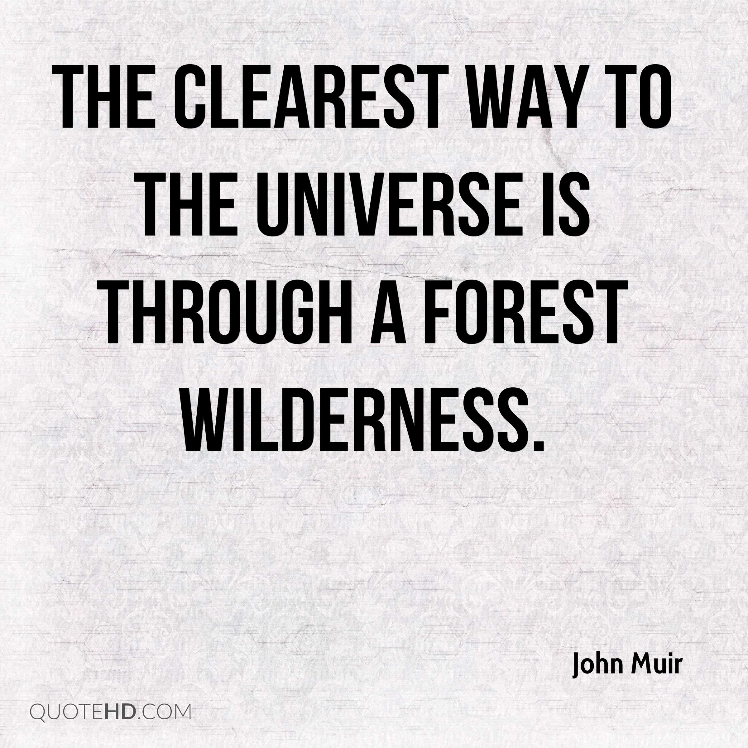 The clearest way to the Universe is through a forest wilderness.
