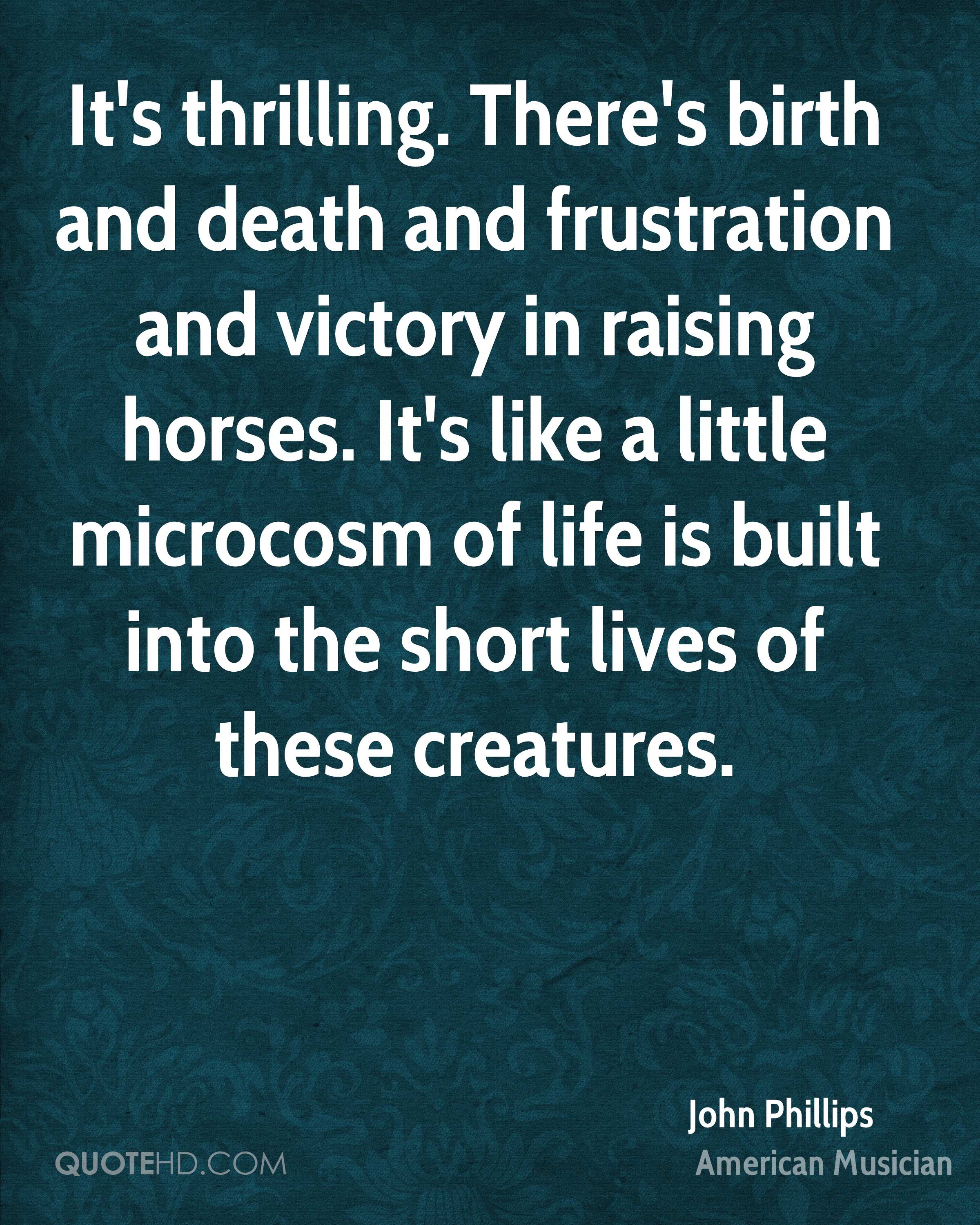 It's thrilling. There's birth and death and frustration and victory in raising horses. It's like a little microcosm of life is built into the short lives of these creatures.