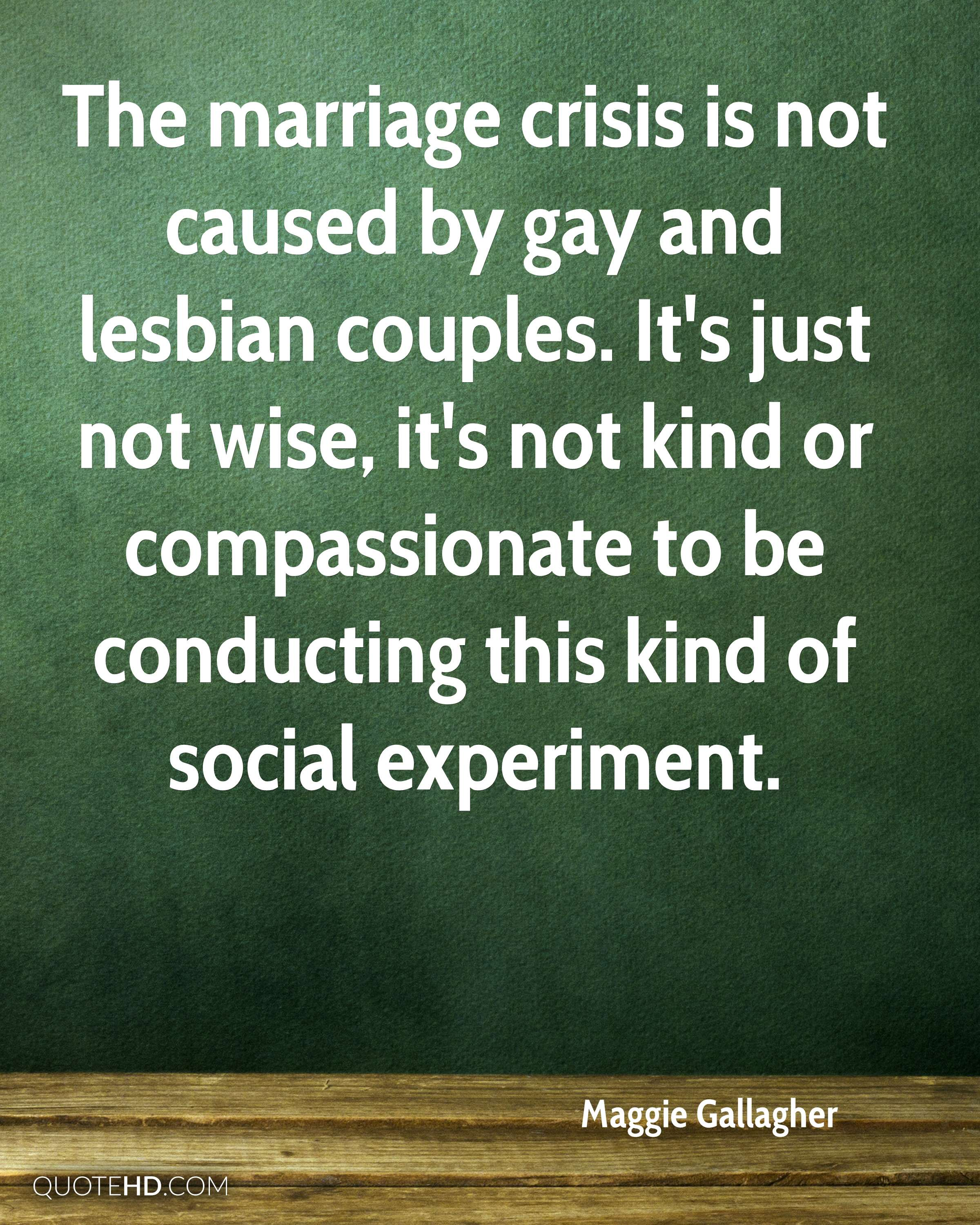 The marriage crisis is not caused by gay and lesbian couples. It's just not wise, it's not kind or compassionate to be conducting this kind of social experiment.