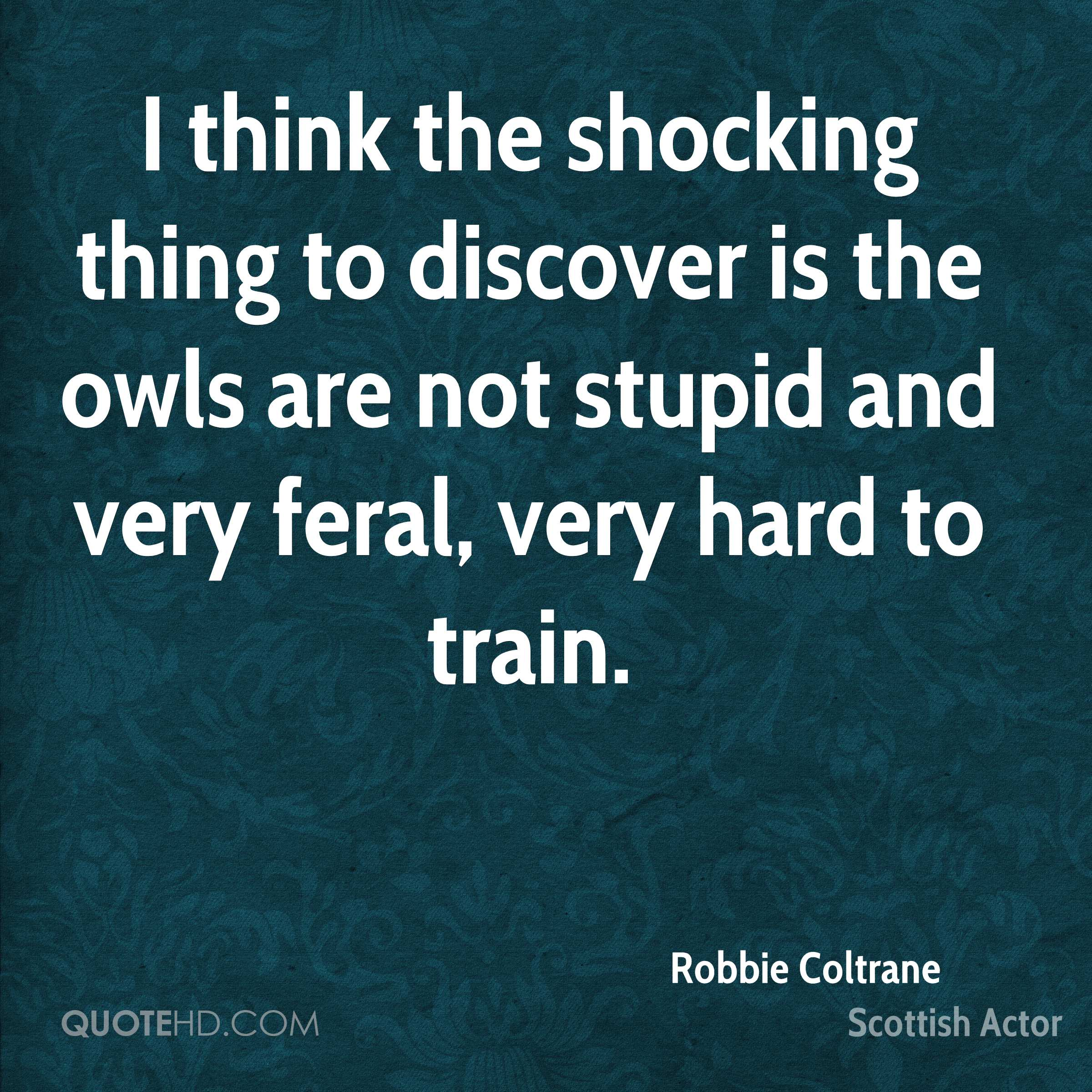 I think the shocking thing to discover is the owls are not stupid and very feral, very hard to train.