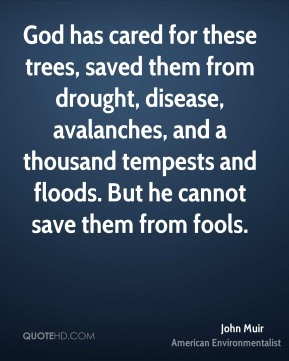 God has cared for these trees, saved them from drought, disease, avalanches, and a thousand tempests and floods. But he cannot save them from fools.