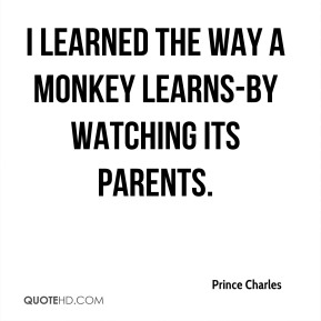 I learned the way a monkey learns-by watching its parents.