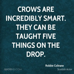 Robbie Coltrane - Crows are incredibly smart. They can be taught five things on the drop.