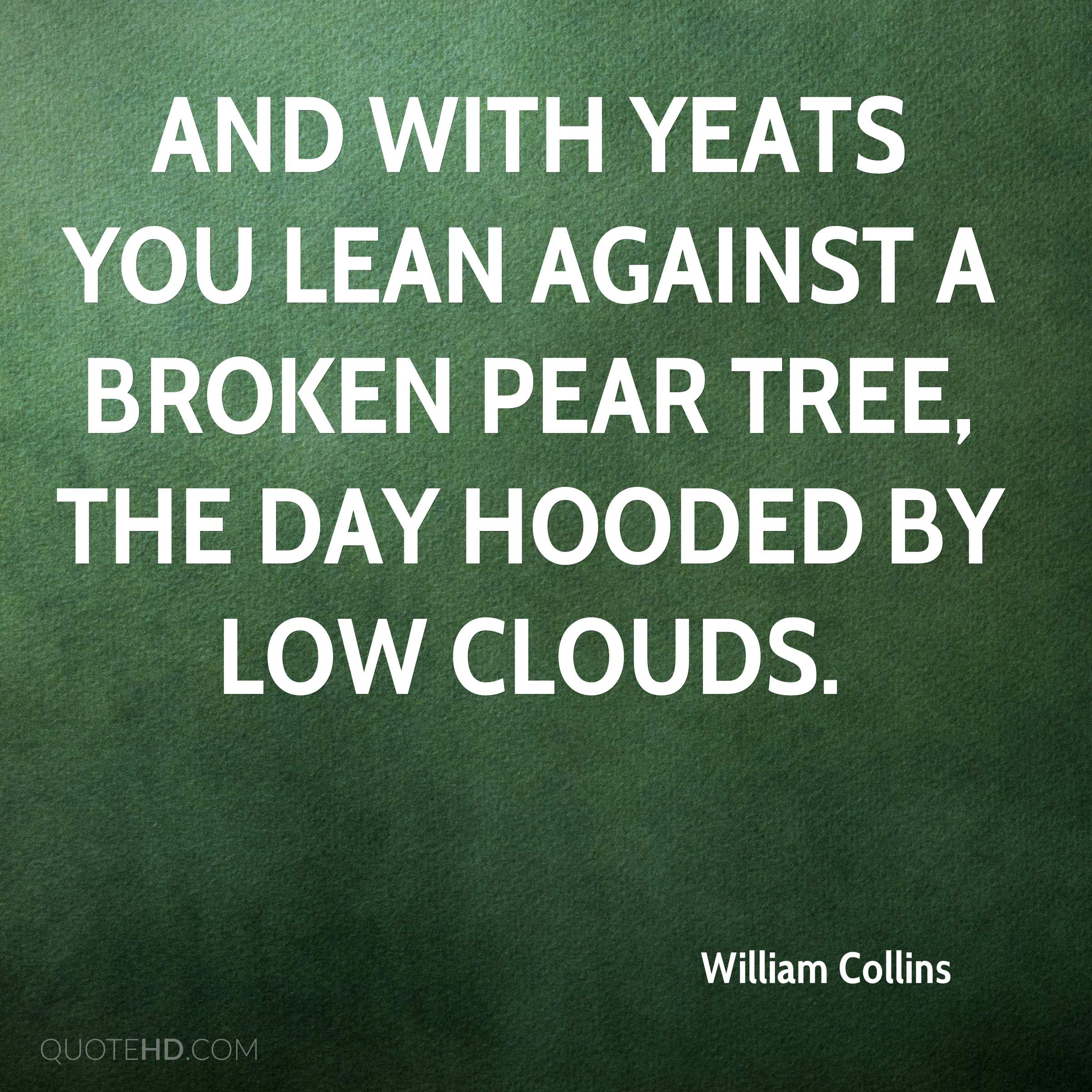 And with Yeats you lean against a broken pear tree, the day hooded by low clouds.