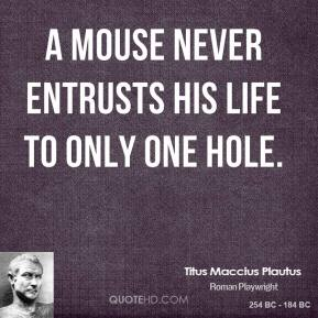 A mouse never entrusts his life to only one hole.
