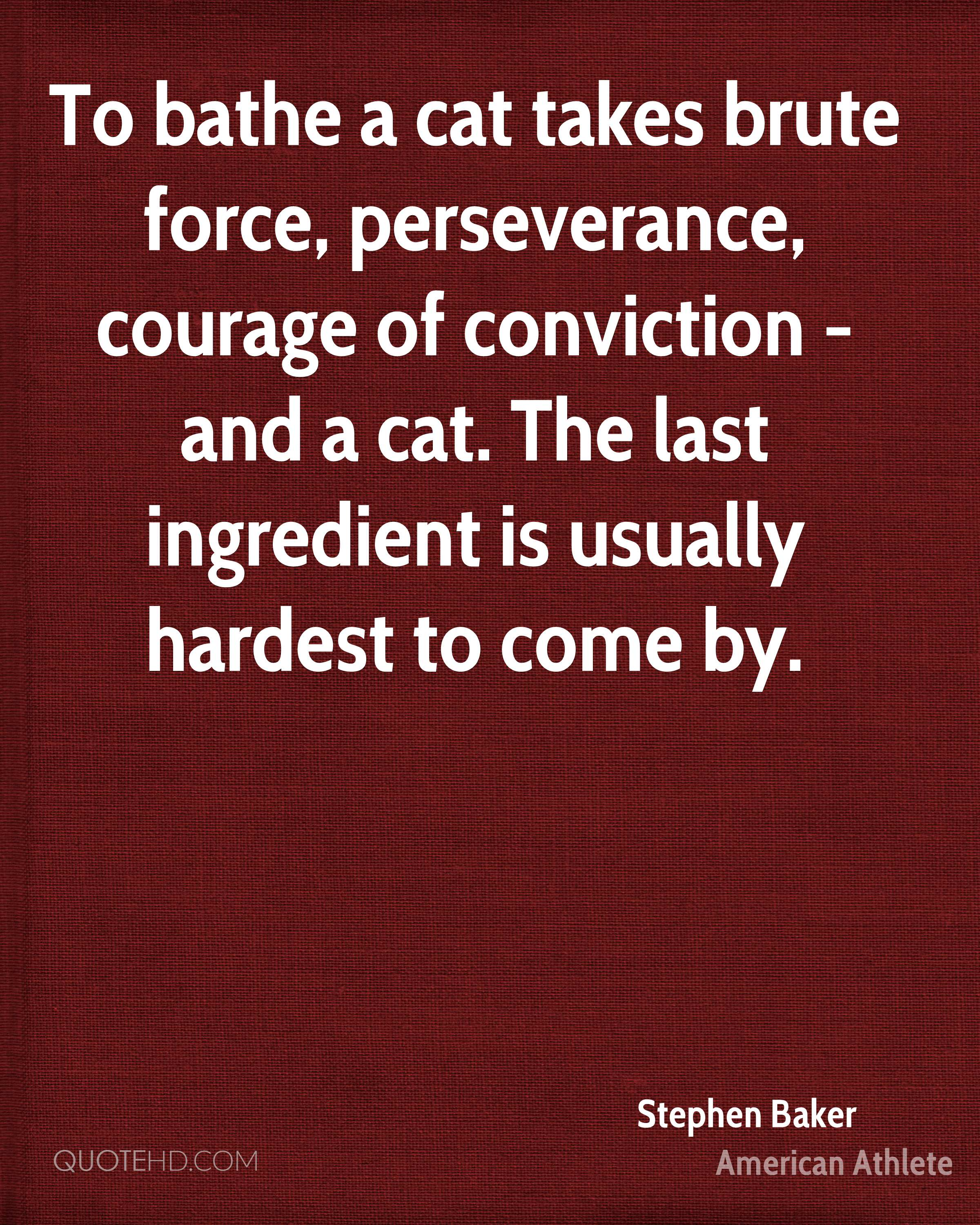 To bathe a cat takes brute force, perseverance, courage of conviction - and a cat. The last ingredient is usually hardest to come by.