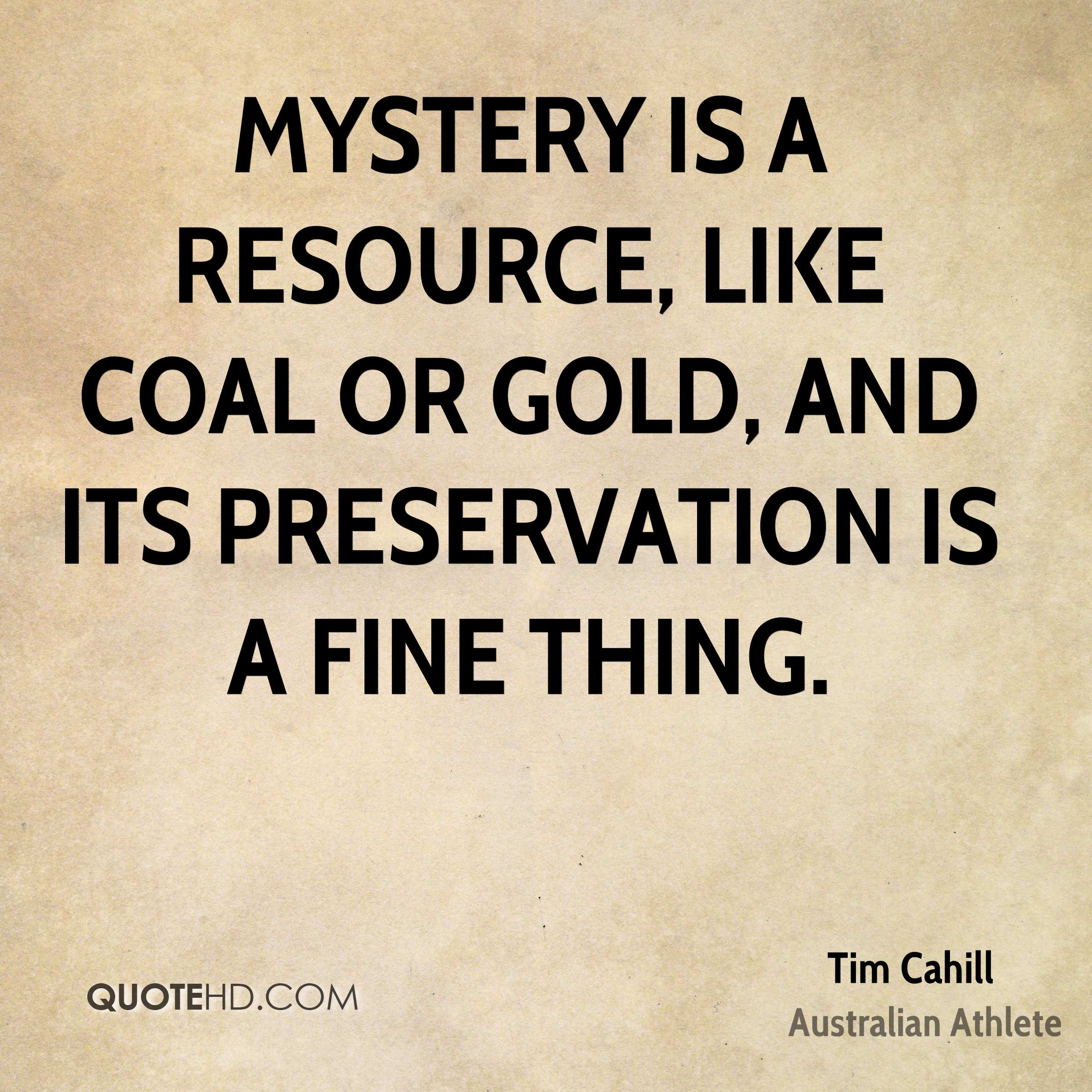 Mystery is a resource, like coal or gold, and its preservation is a fine thing.