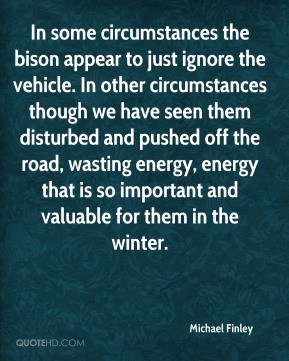 In some circumstances the bison appear to just ignore the vehicle. In other circumstances though we have seen them disturbed and pushed off the road, wasting energy, energy that is so important and valuable for them in the winter.