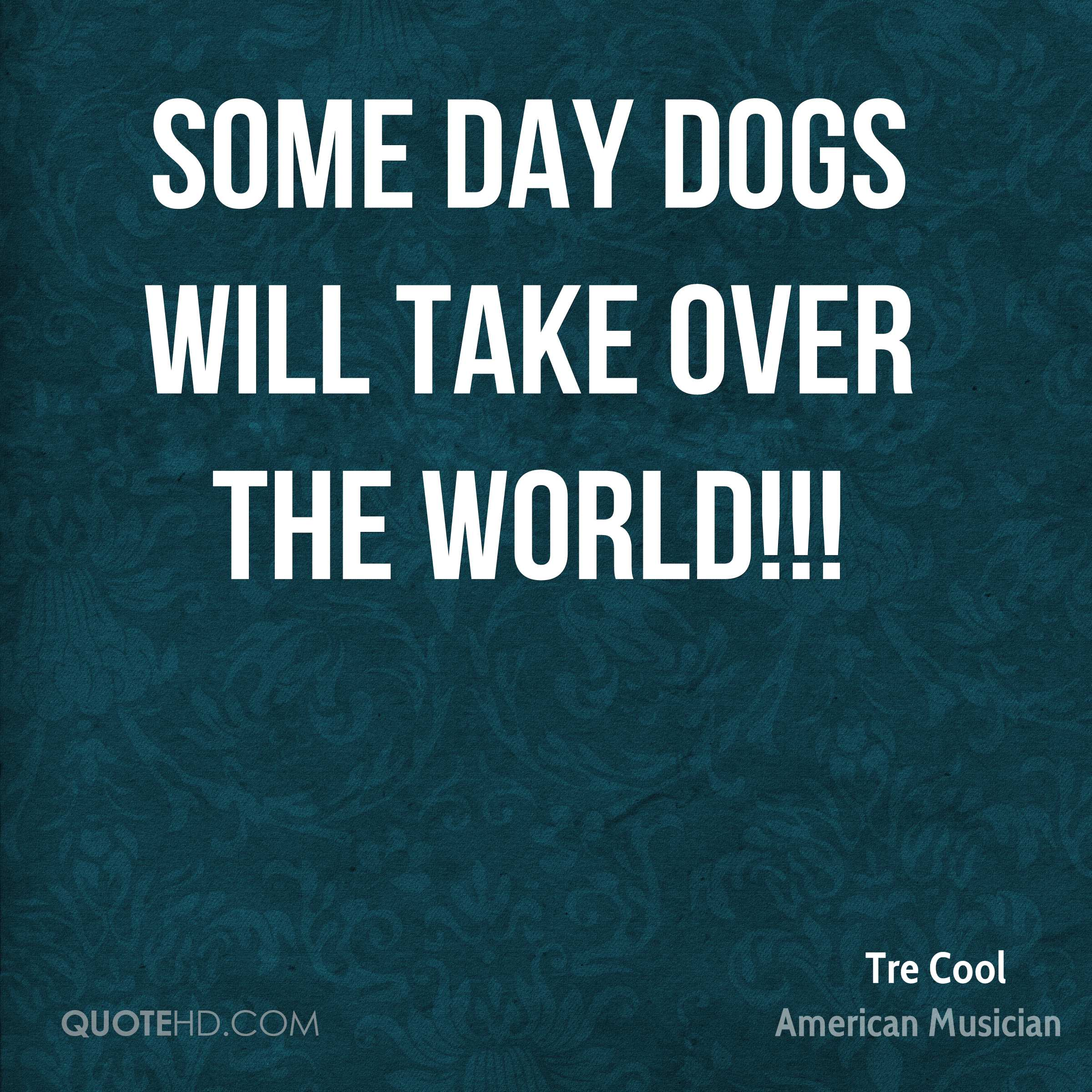 Some day dogs will take over the world!!!