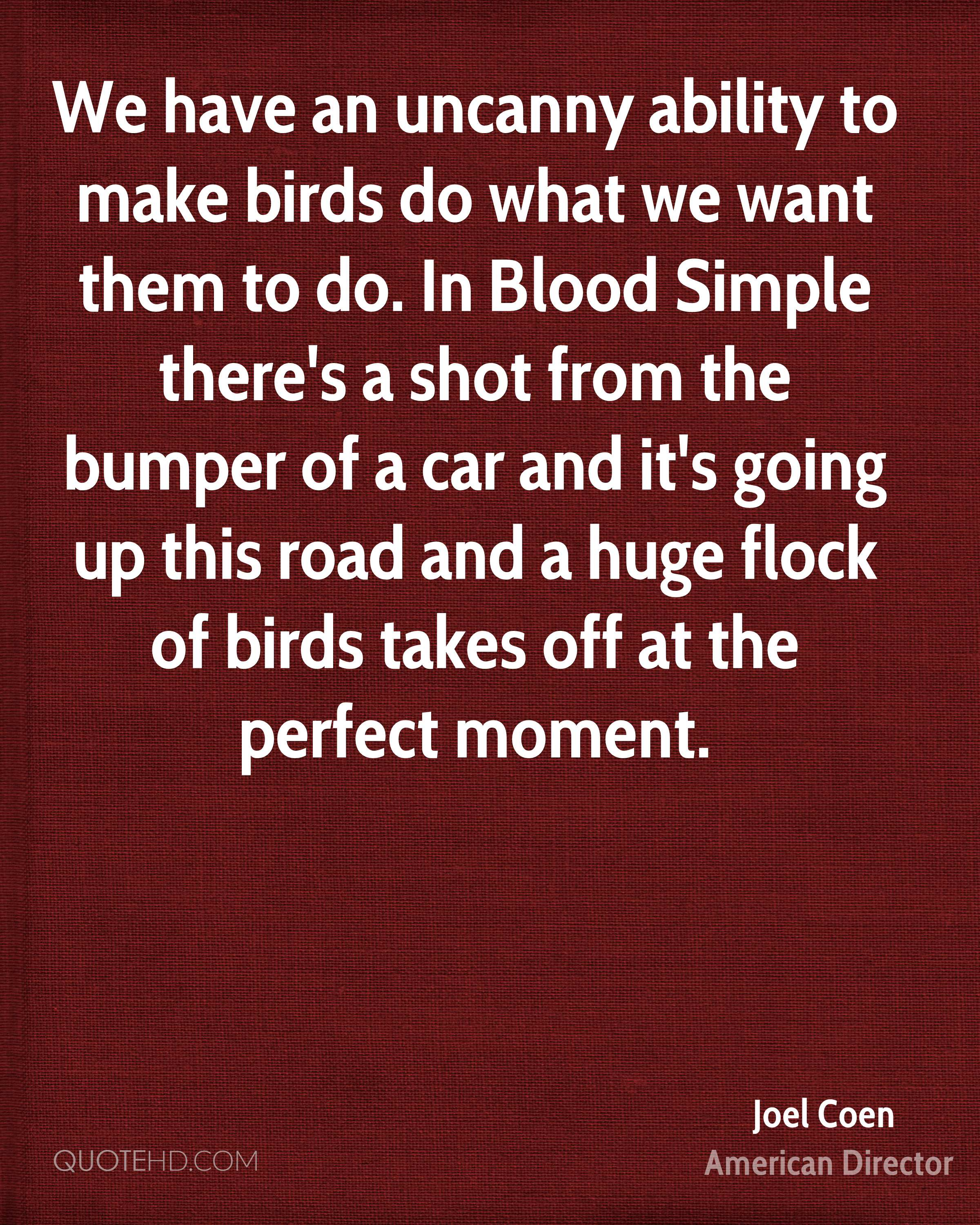 We have an uncanny ability to make birds do what we want them to do. In Blood Simple there's a shot from the bumper of a car and it's going up this road and a huge flock of birds takes off at the perfect moment.