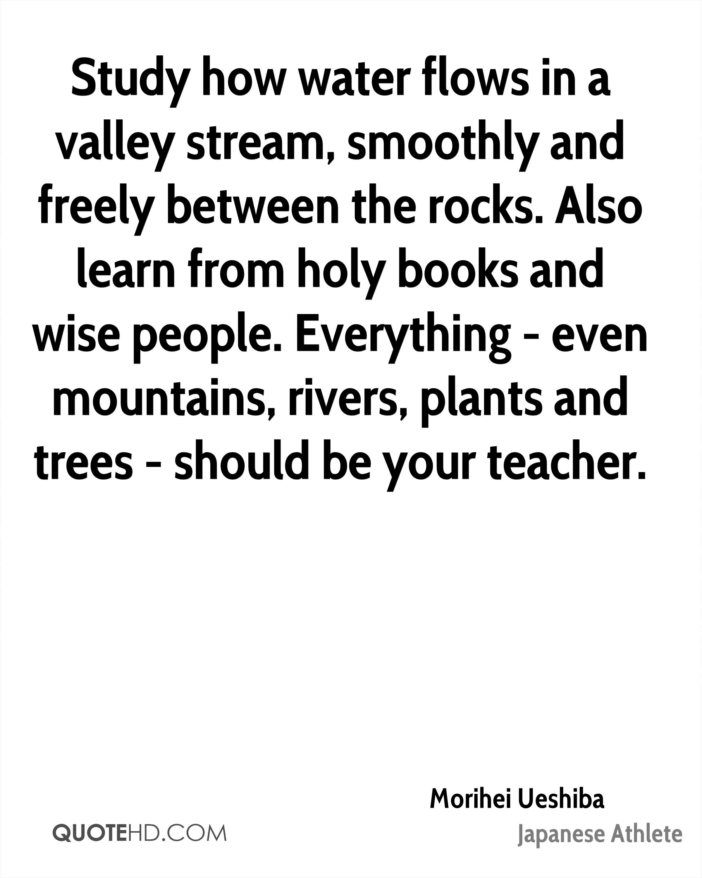 Study how water flows in a valley stream, smoothly and freely between the rocks. Also learn from holy books and wise people. Everything - even mountains, rivers, plants and trees - should be your teacher.