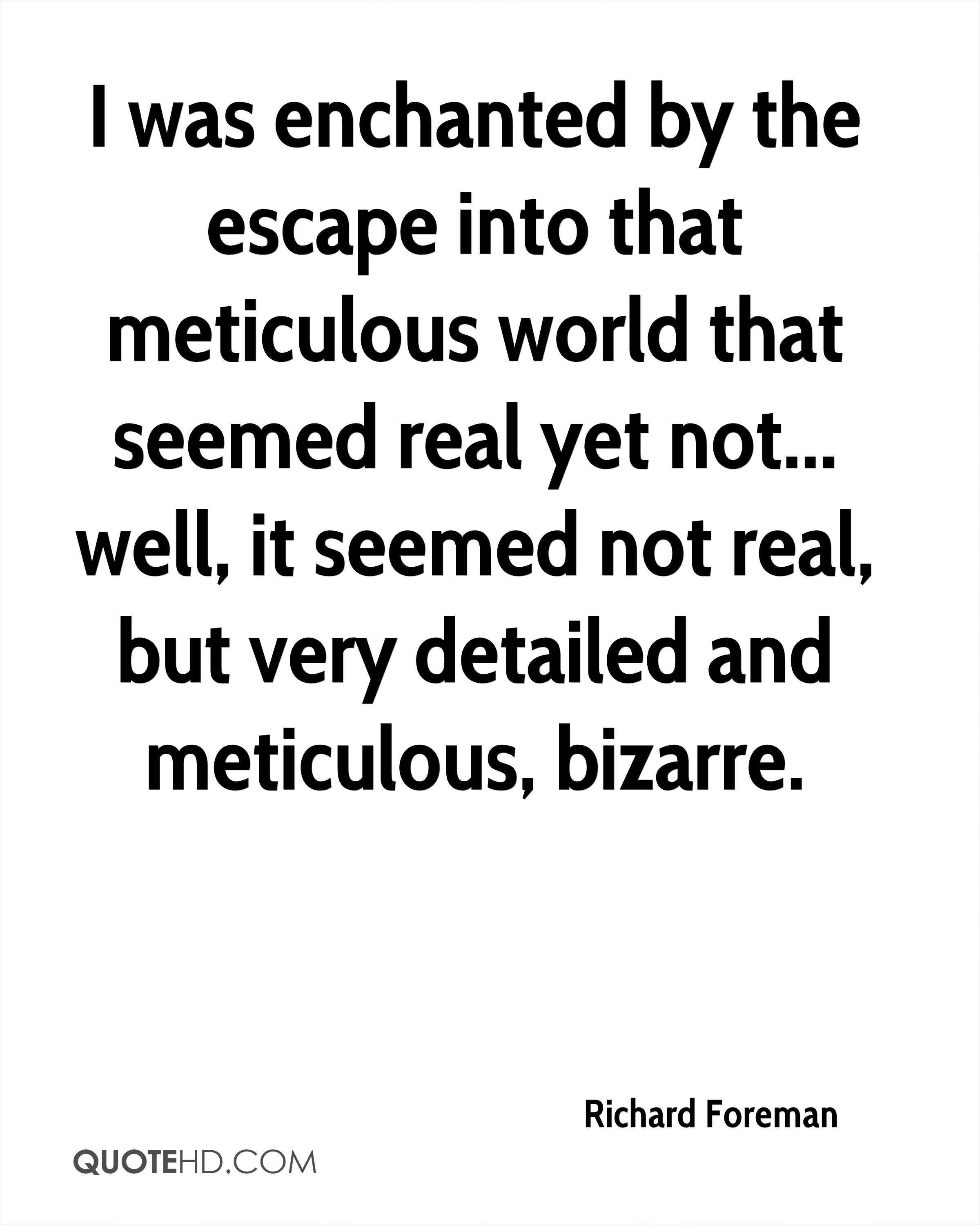 I was enchanted by the escape into that meticulous world that seemed real yet not... well, it seemed not real, but very detailed and meticulous, bizarre.