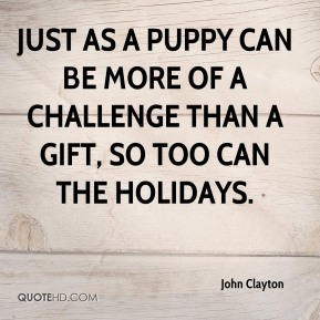 Just as a puppy can be more of a challenge than a gift, so too can the holidays.