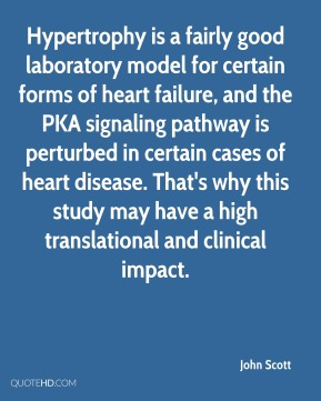 Hypertrophy is a fairly good laboratory model for certain forms of heart failure, and the PKA signaling pathway is perturbed in certain cases of heart disease. That's why this study may have a high translational and clinical impact.