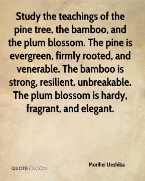 Morihei Ueshiba  - Study the teachings of the pine tree, the bamboo, and the plum blossom. The pine is evergreen, firmly rooted, and venerable. The bamboo is strong, resilient, unbreakable. The plum blossom is hardy, fragrant, and elegant.