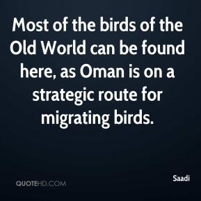 Saadi  - Most of the birds of the Old World can be found here, as Oman is on a strategic route for migrating birds.