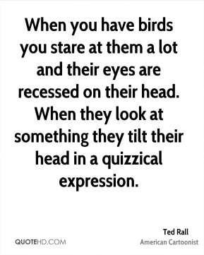 When you have birds you stare at them a lot and their eyes are recessed on their head. When they look at something they tilt their head in a quizzical expression.