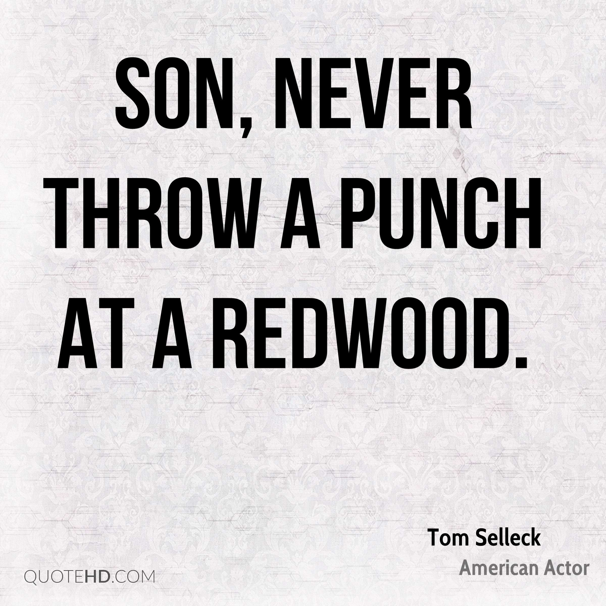 Son, never throw a punch at a redwood.