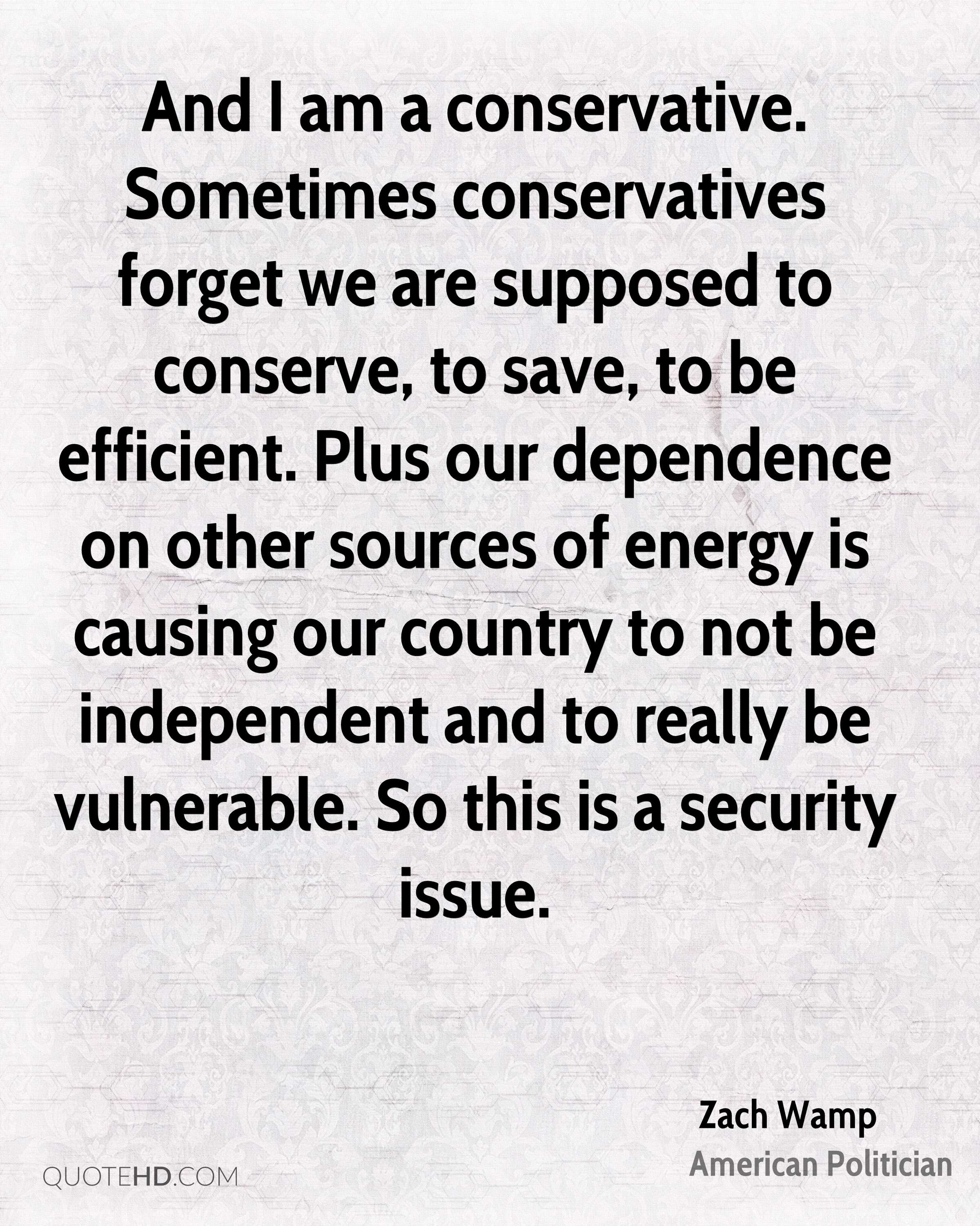 And I am a conservative. Sometimes conservatives forget we are supposed to conserve, to save, to be efficient. Plus our dependence on other sources of energy is causing our country to not be independent and to really be vulnerable. So this is a security issue.