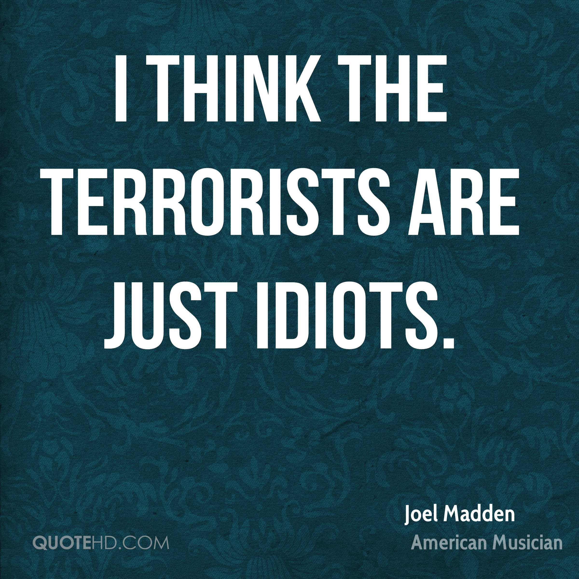 I think the terrorists are just idiots.