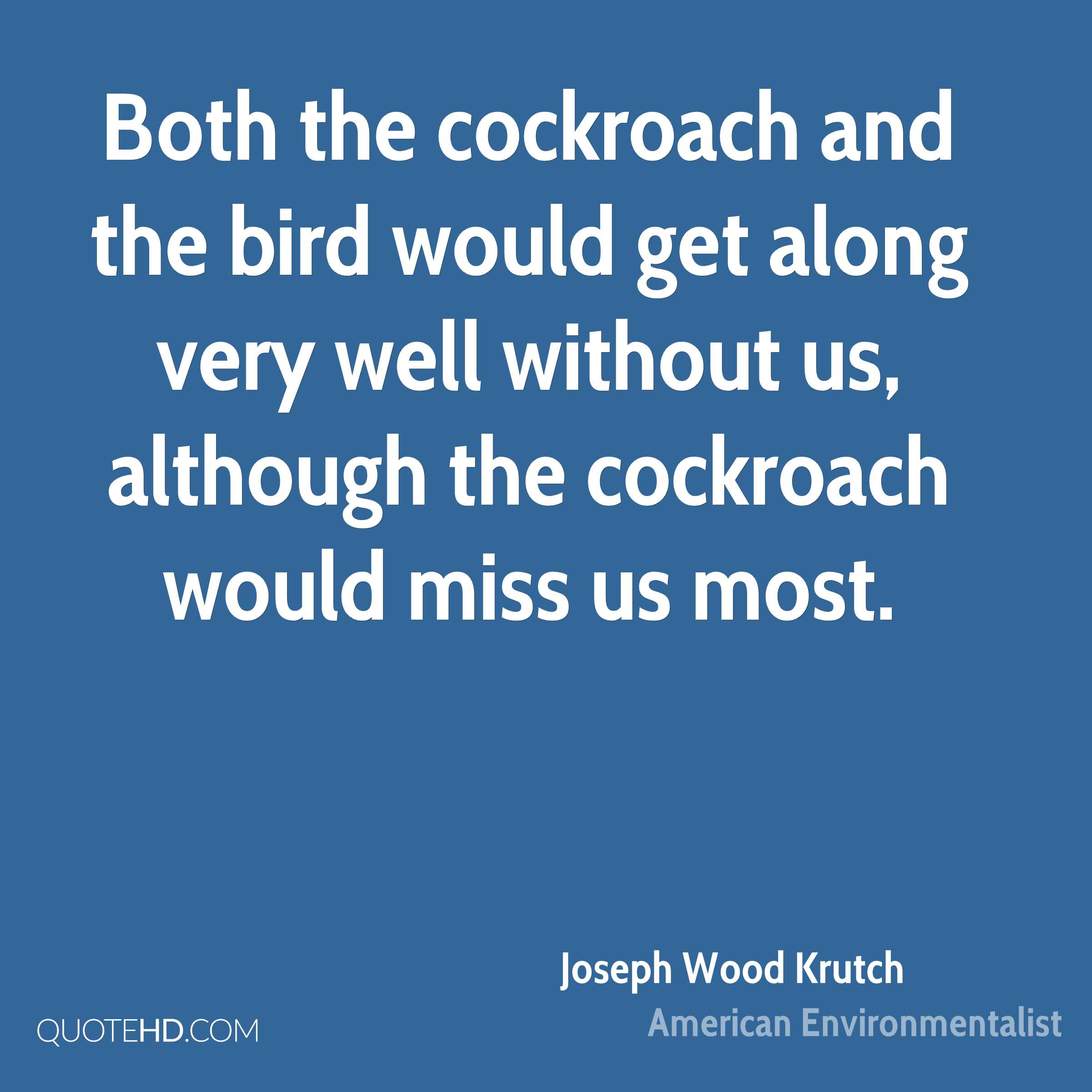 Both the cockroach and the bird would get along very well without us, although the cockroach would miss us most.