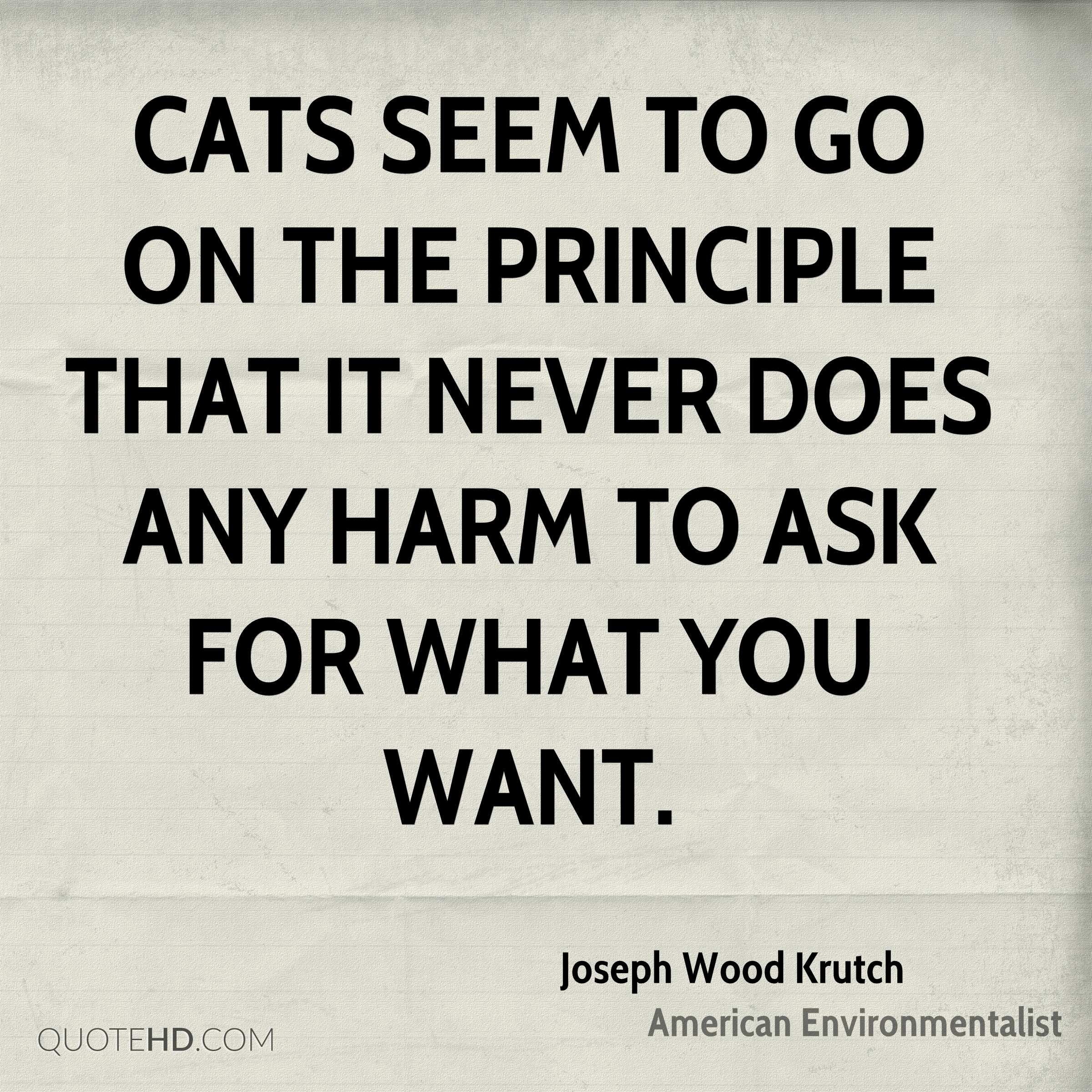 Cats seem to go on the principle that it never does any harm to ask for what you want.