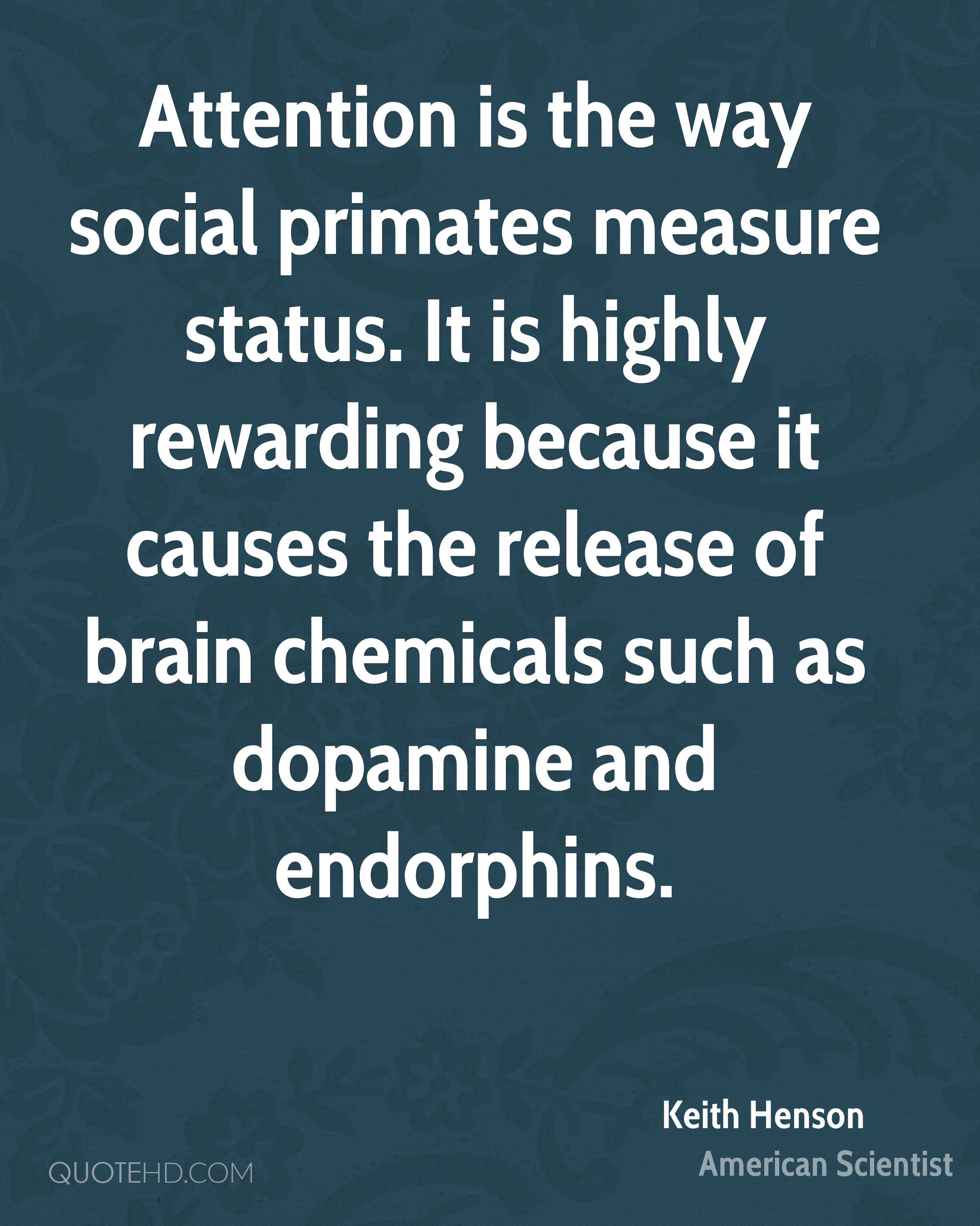 Attention is the way social primates measure status. It is highly rewarding because it causes the release of brain chemicals such as dopamine and endorphins.