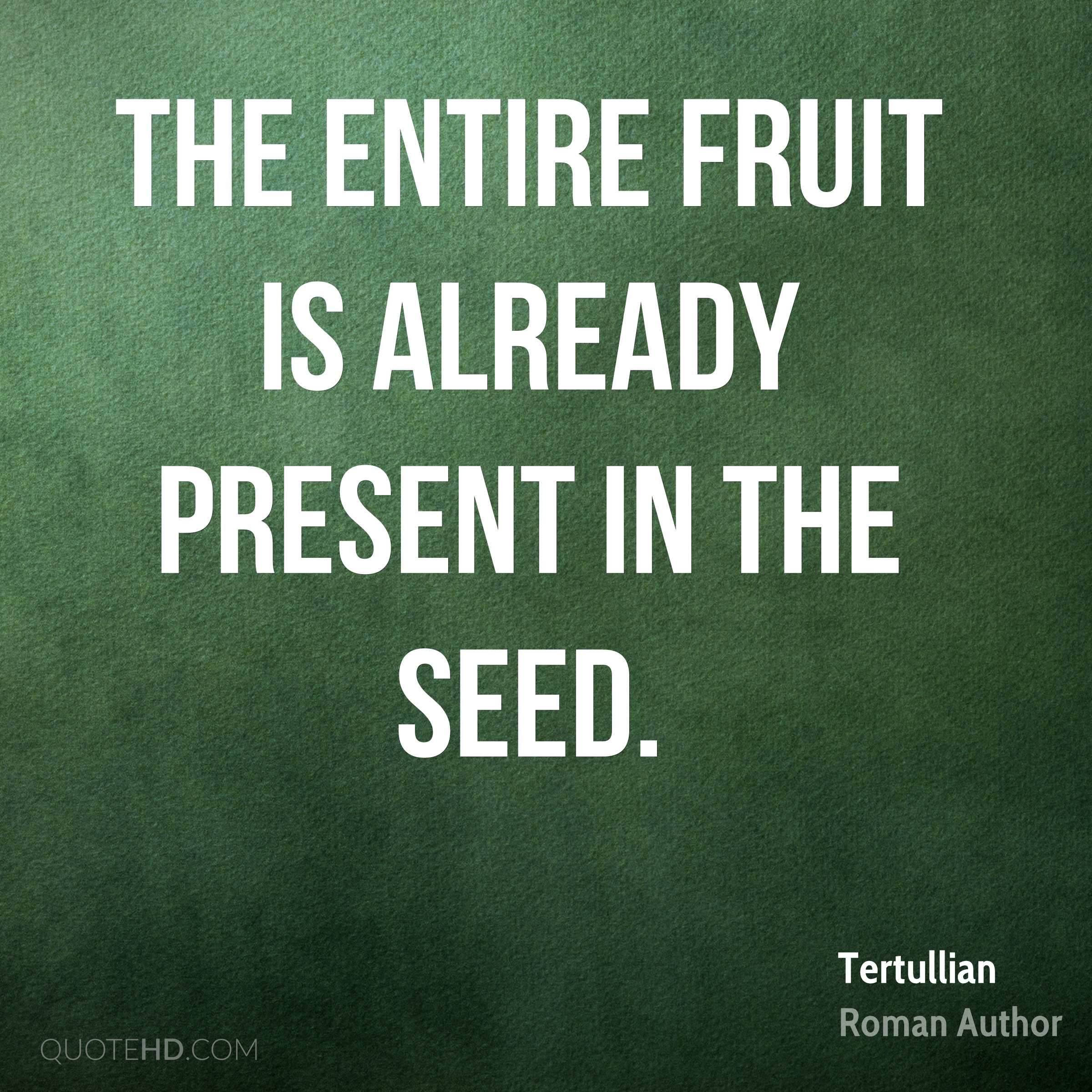The entire fruit is already present in the seed.