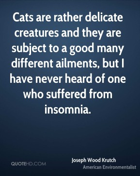 Cats are rather delicate creatures and they are subject to a good many different ailments, but I have never heard of one who suffered from insomnia.