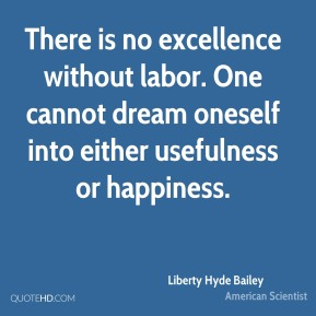 There is no excellence without labor. One cannot dream oneself into either usefulness or happiness.