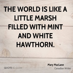 The world is like a little marsh filled with mint and white hawthorn.