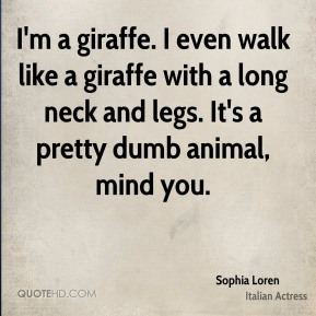 Sophia Loren - I'm a giraffe. I even walk like a giraffe with a long neck and legs. It's a pretty dumb animal, mind you.