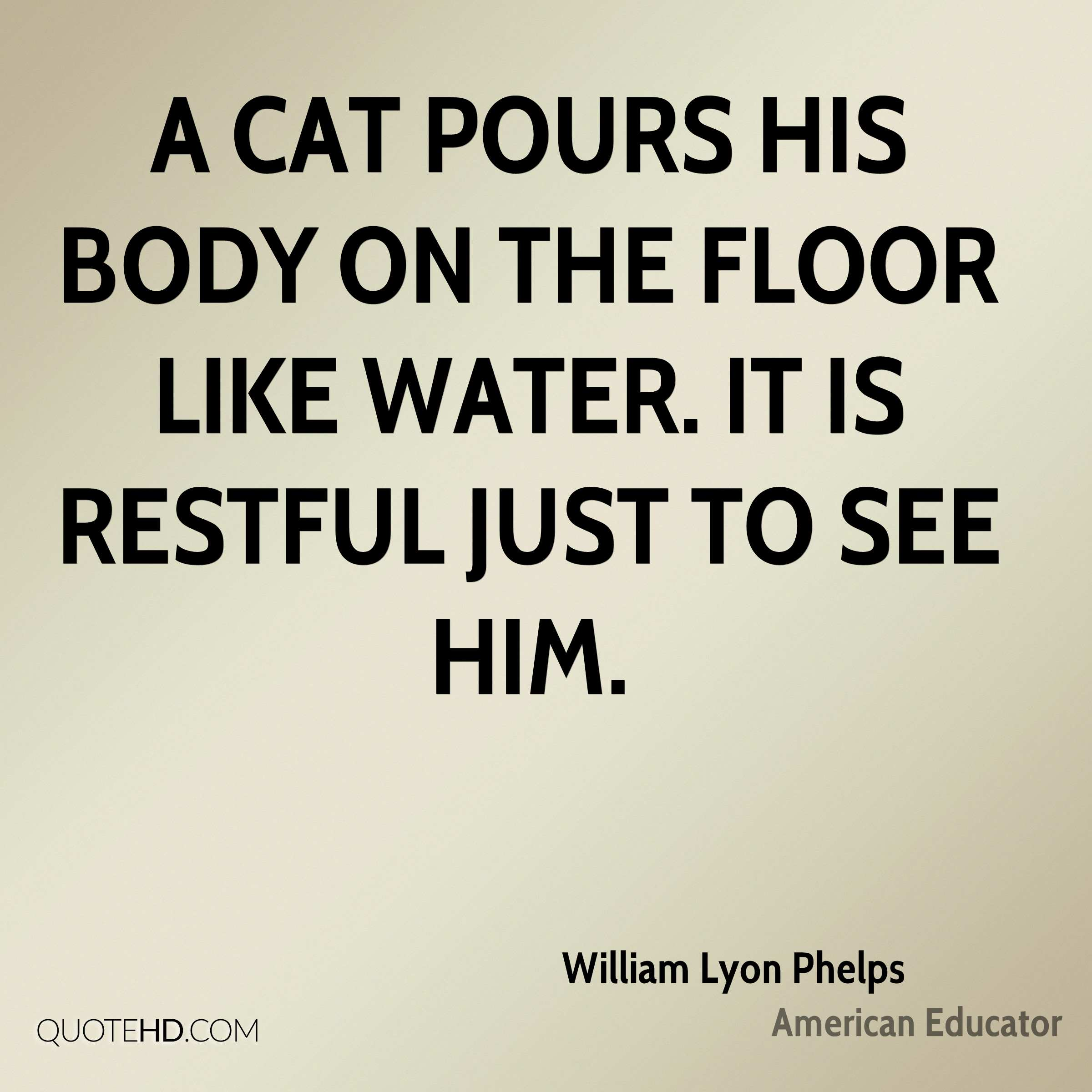A cat pours his body on the floor like water. It is restful just to see him.