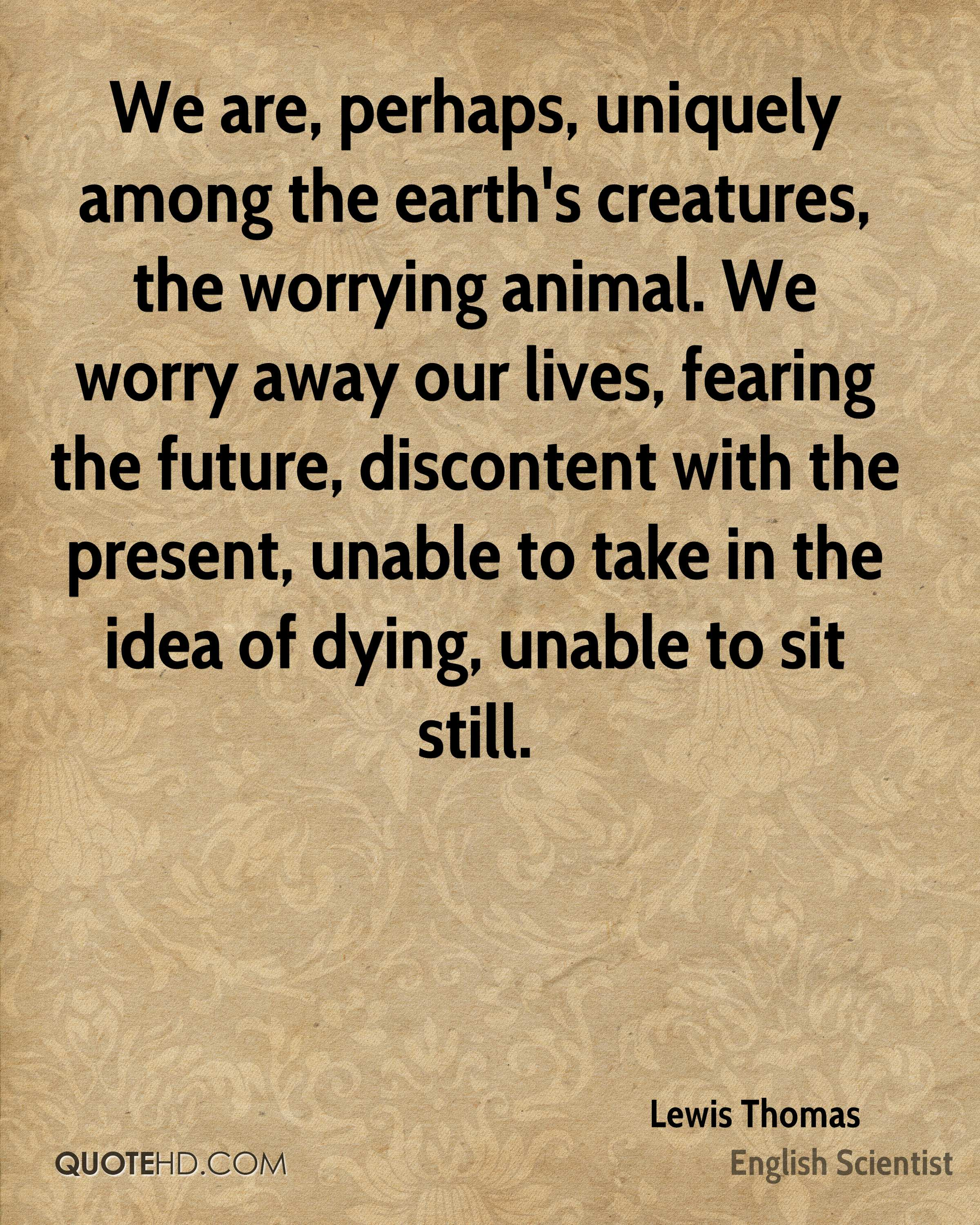 We are, perhaps, uniquely among the earth's creatures, the worrying animal. We worry away our lives, fearing the future, discontent with the present, unable to take in the idea of dying, unable to sit still.
