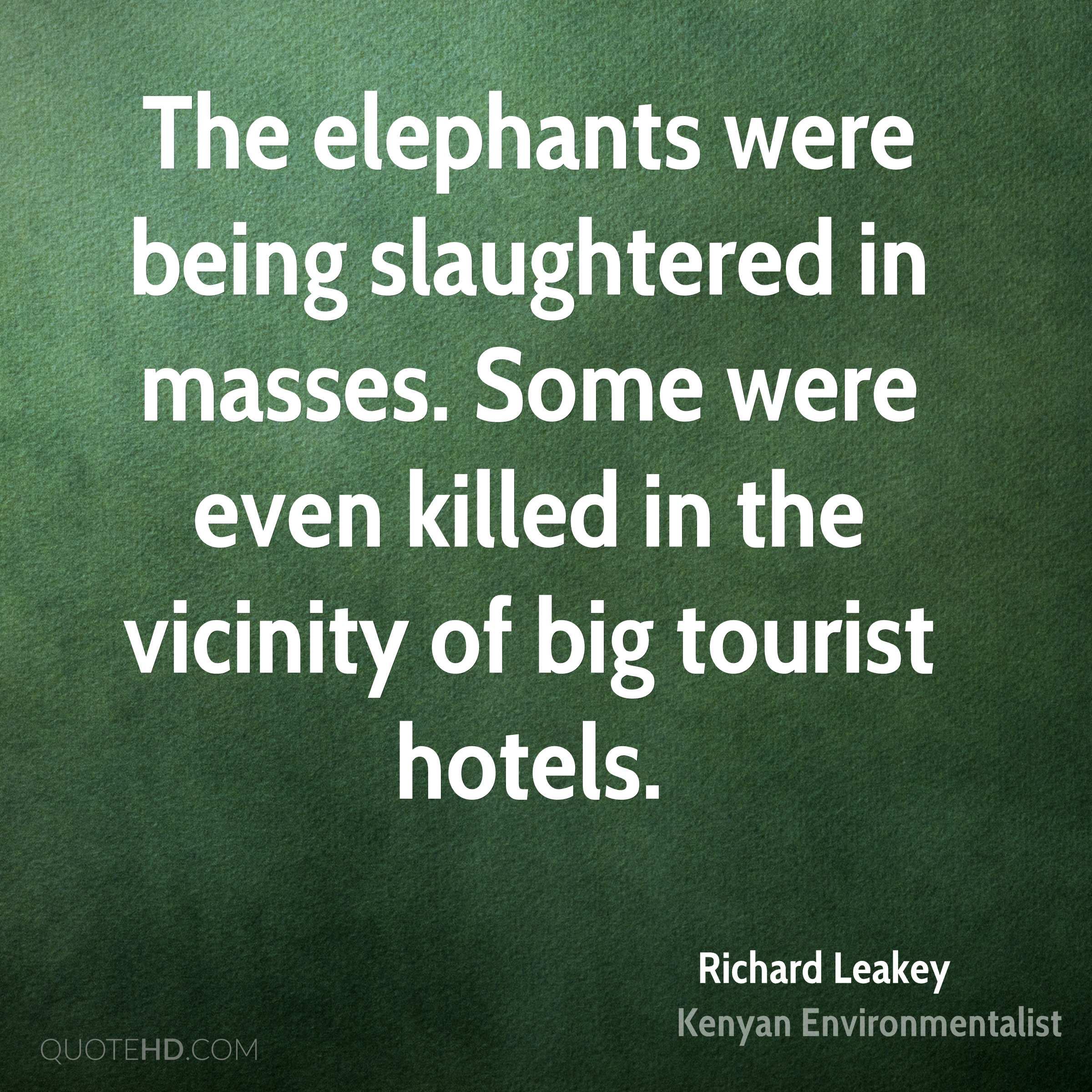 The elephants were being slaughtered in masses. Some were even killed in the vicinity of big tourist hotels.