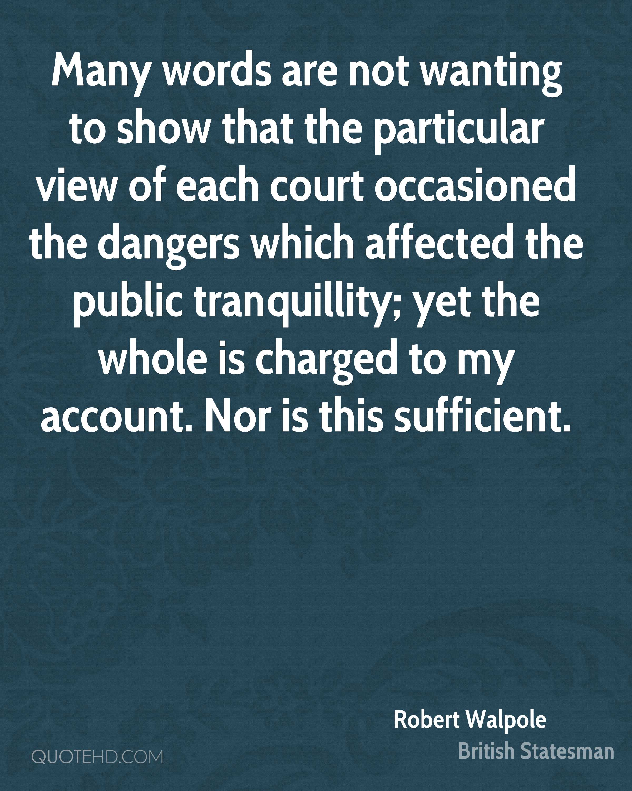 Many words are not wanting to show that the particular view of each court occasioned the dangers which affected the public tranquillity; yet the whole is charged to my account. Nor is this sufficient.