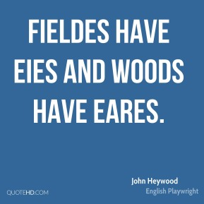 Fieldes have eies and woods have eares.