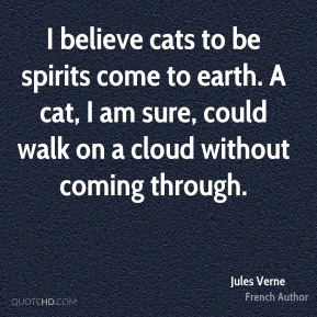 I believe cats to be spirits come to earth. A cat, I am sure, could walk on a cloud without coming through.